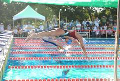 2007聽障游泳錦標賽-跳水
