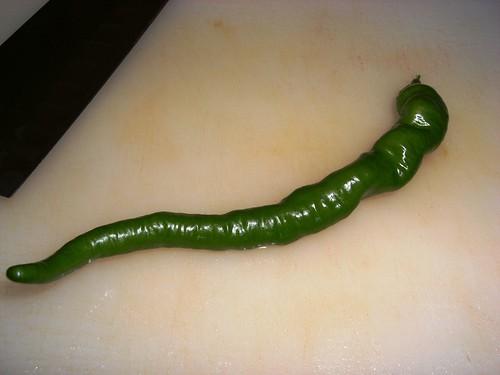 Portugese Hot Pepper