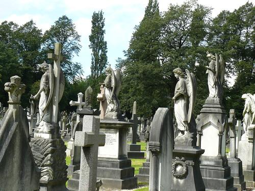 A cohort of angels