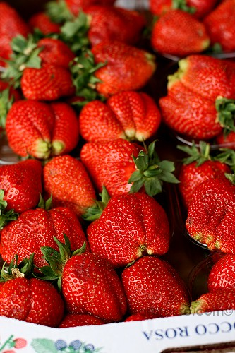 Fresh strawberries - Sagra della Fragola, Strawberry Festival in Italy