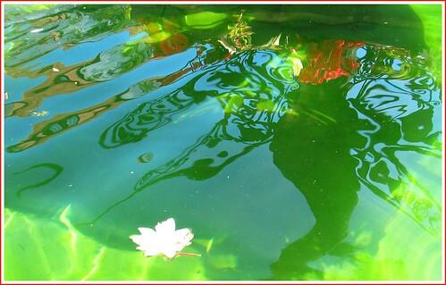 Brunnenspiegelung I