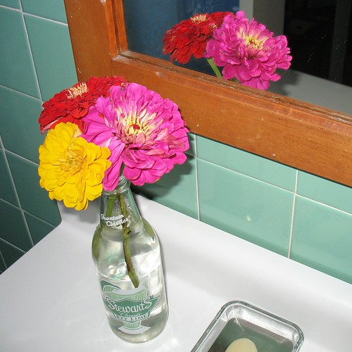 Zinnias in the bathroom