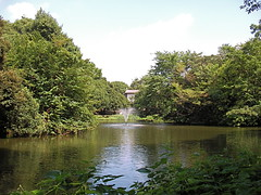 Wadabori-park