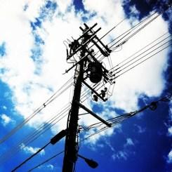 朝ー! ふと、電信柱を見上げてみる。