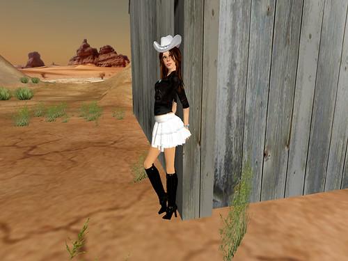 modern cowgirl 006