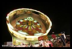 Mont. County Fair  _MG_5259.jpg