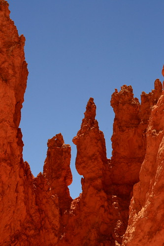 bryce canyon photography