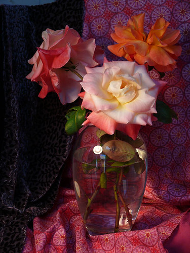 Still life stage, roses