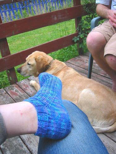 little bamboo socks 3