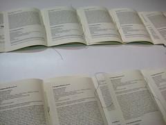 cotillons per il secondo compleanno di FNl, di FNs e di FNa, Milano, 15.10.2010; Professione Libro, 8