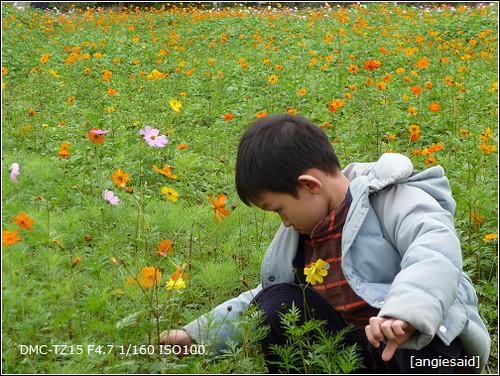 b-20090101_131009.jpg