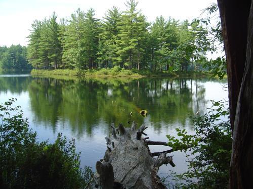 Goose Pond, Keene, NH