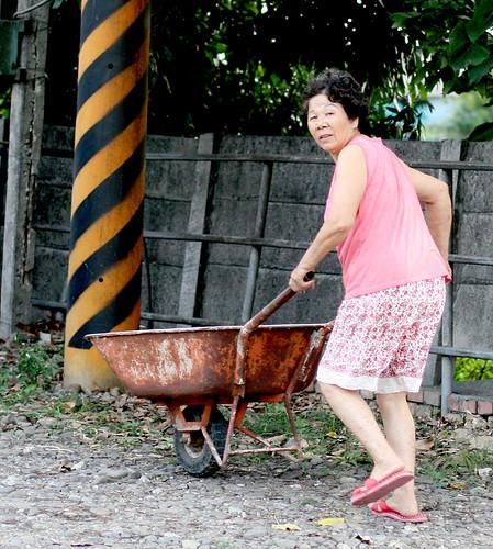 pushing a wheelbarrow