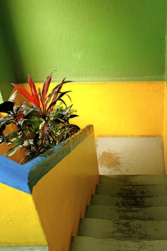 Colorful stairway