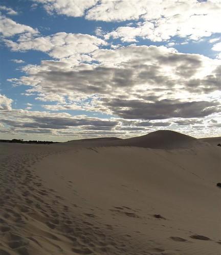 Mungo Sand Dune (Large)