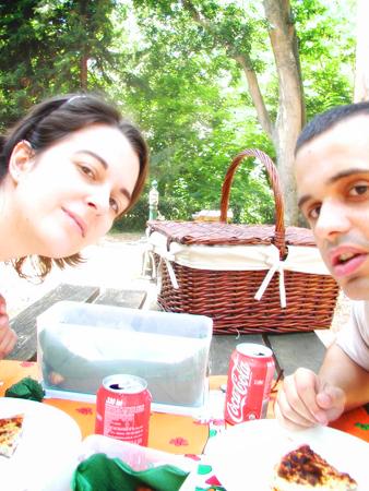 #17 - The picnic