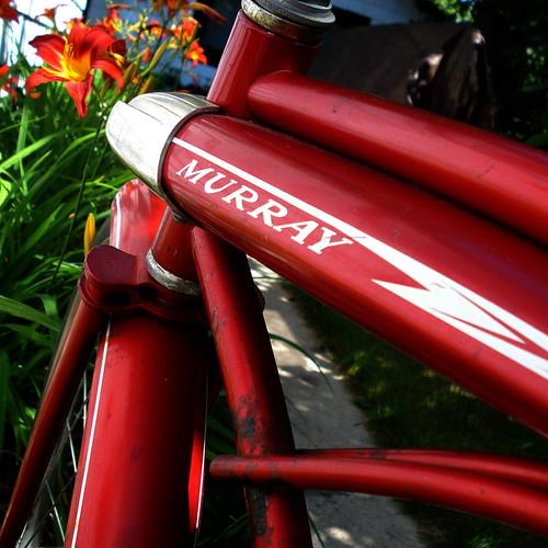 murray bike
