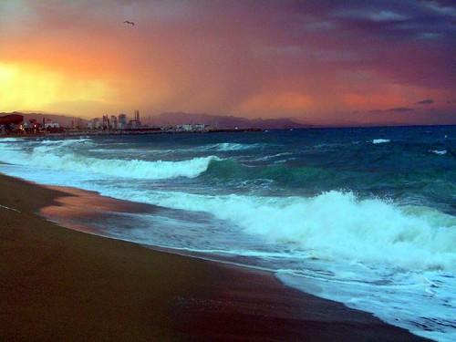 Barcelona Beach by Ananda Niyogi.