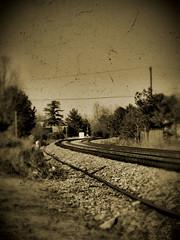 The Tracks