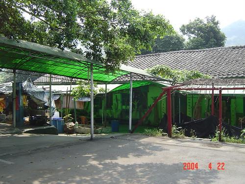 DSC00976