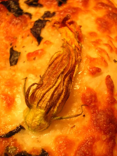 Squash Blossom on Pizza