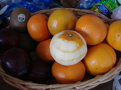 Naked Orange in Fruit Bowl