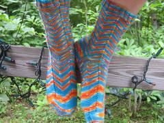 Johnny-come-lately socks