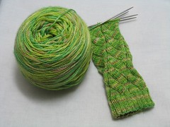 Penllyn Socks