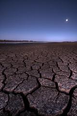 Desert Moon Rising
