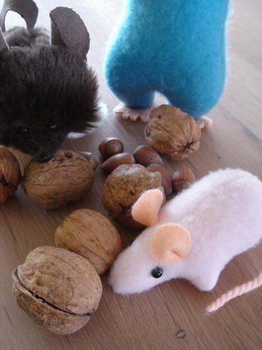 raggyrat mice