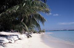 Karumba in The Maldives