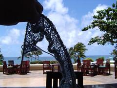 Kauai Hyatt - knitting