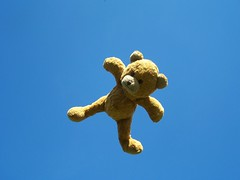 Teddy Flying