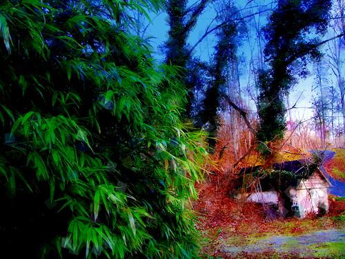 A Mystics Cottage