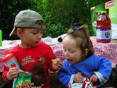 sharing chips