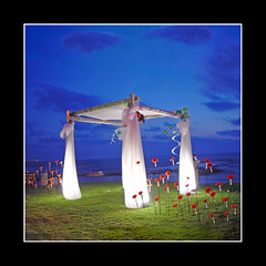Magical White Wedding