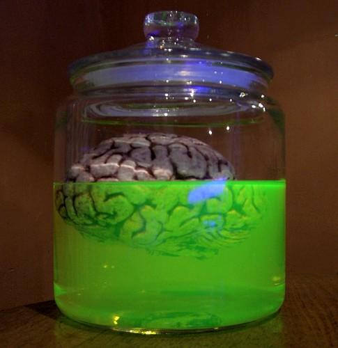 cerebro en frasco