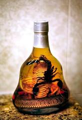Chinese Snake Wine