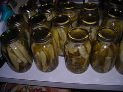 pickles! we've got 30 jars of 'em!