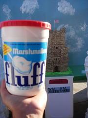 Fluff Prospect Hill Tower