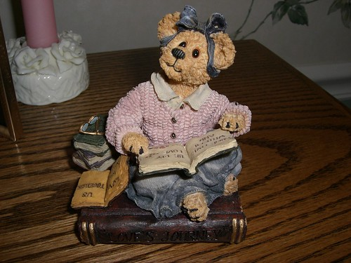 Boyd's Bear book lover
