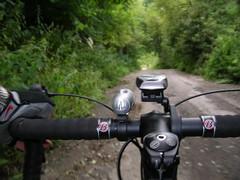 the Old Black Dog Road