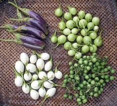 4 kinds of eggplants | ארבעה סוגי חצילים