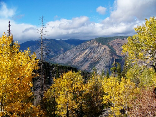 Fall colors, Coeur d'Alene Mountains