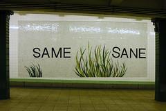 Same Sane