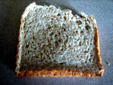WholemealBread_20090919_01x