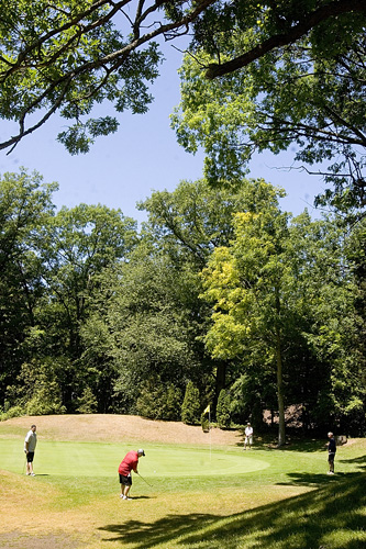 Oakwood's #8 has a hole lower than the hill, so longer pins were needed for golfers to see it