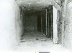 tunnel in banawa 2