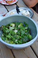 Salad in washing up bowl