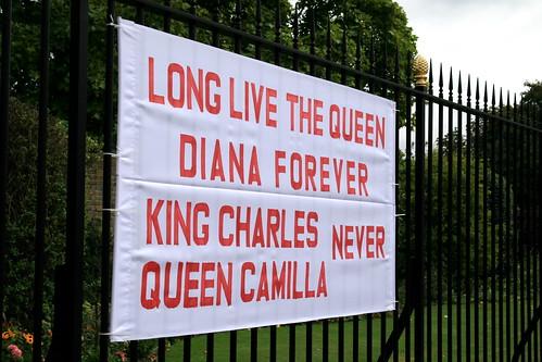 Subversive Diana banner